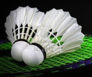 Campionatul National Echipe si Cupa Romaniei – Tineret – Badminton